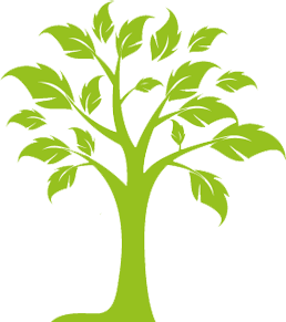 Growing Tree 5 Icon